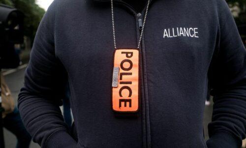 🇫🇷 Contrôles des pass sanitaires: «La police et la gendarmerie ont autre chose à faire», estime le délégué général du syndicat Alliance